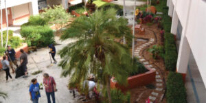 Equality Garden Club_Aerial view of the Butterfly Garden Atrium