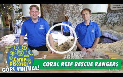 Coral Reef Rescue Rangers